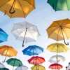 機内に傘は?