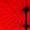 日傘を使い分ける